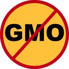GMO_freeLogos-04